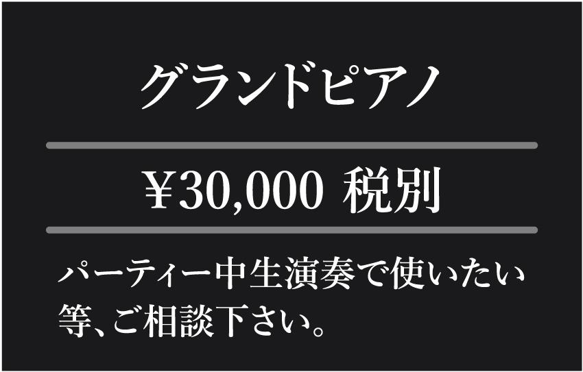 有料サービス グランドピアノ 生演奏 弾き語り コンサート