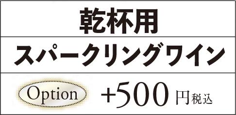 オプション500円